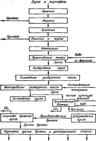 Принципиальная технологическая схема производства спирта из зерна и картофеля.  Спирт-рек - Сивушные Зірироальде...
