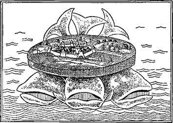 3-кита