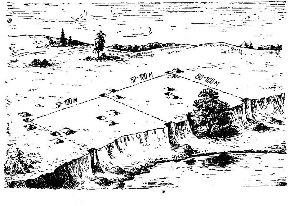 Расположение шурфов глины