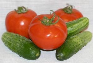 Выращивание огурцов и томатов